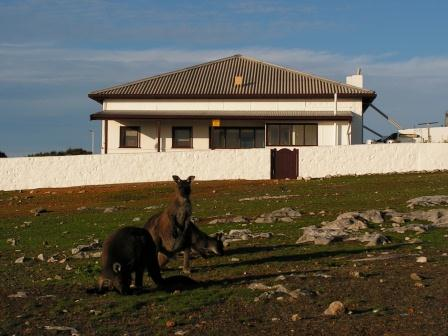 Flinders Light Lodge - Cape Borda - Standard