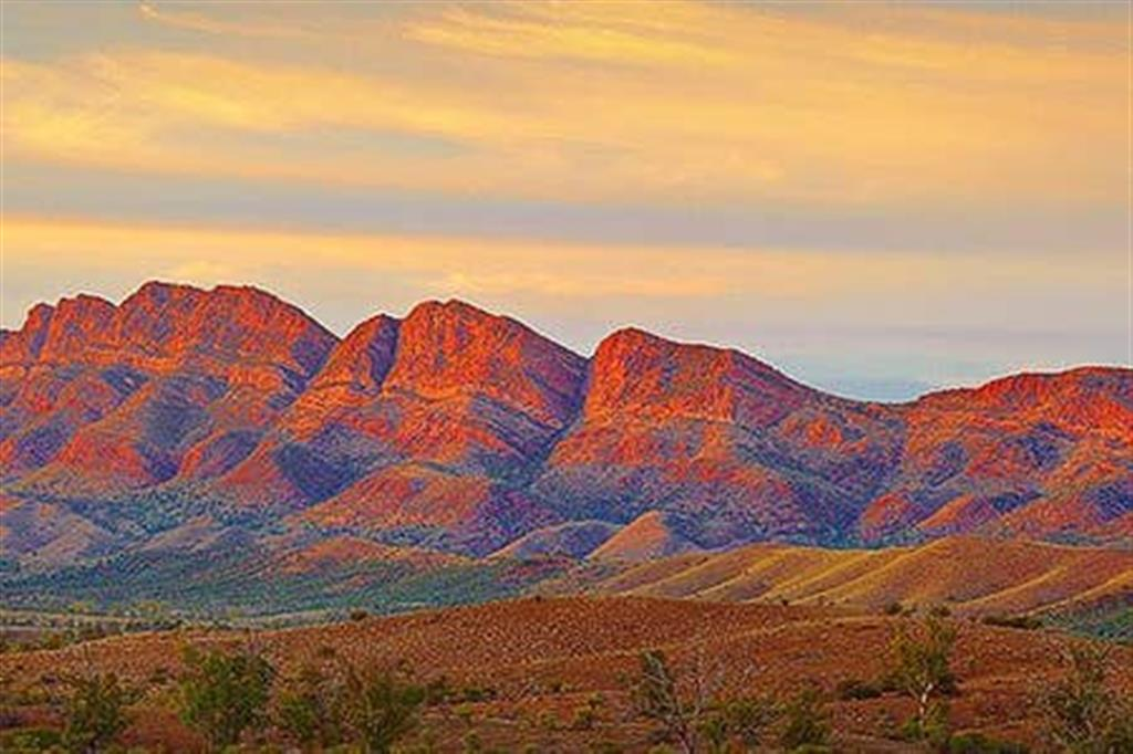 Flinders Ranges Bed and Breakfast - Elder Range