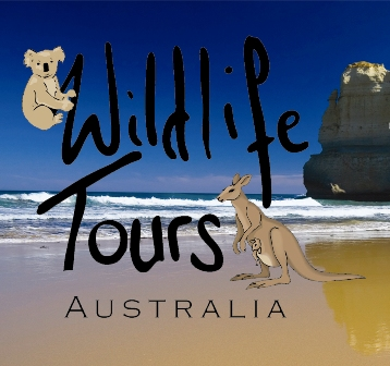 Wildlife Tours Australia logo