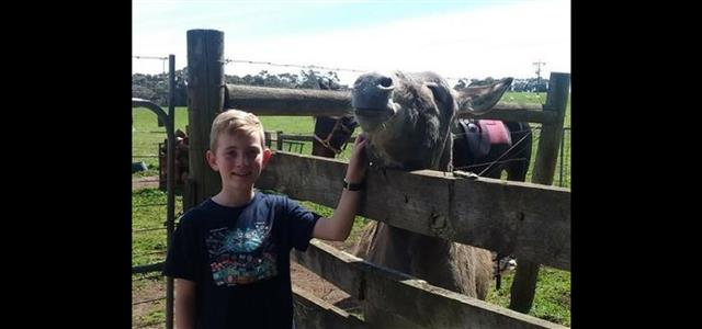 Boy with Donkey at Echo Farm Mount Gambier