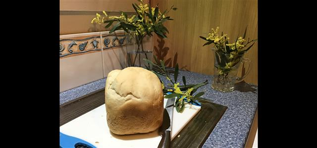 Homemade Bread by You